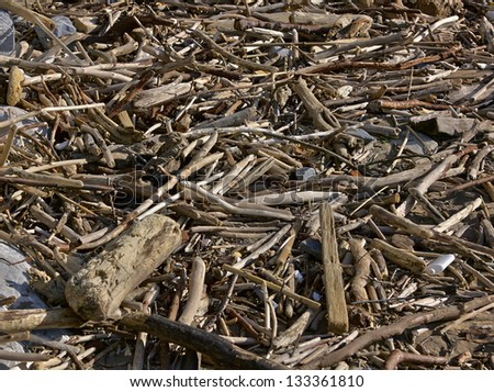garbage on the beach close up - stock photo