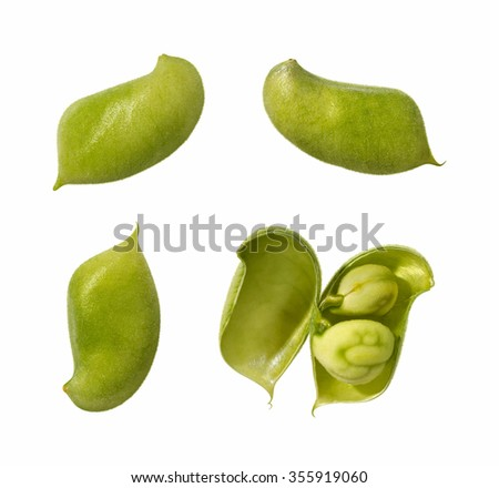 Garbanzo Bean Pods. These nutritious legumes can be cooked, and are high in protein and fiber. The image is a cut out, isolated on a white background.