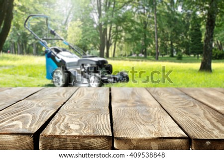 garden and table  - stock photo