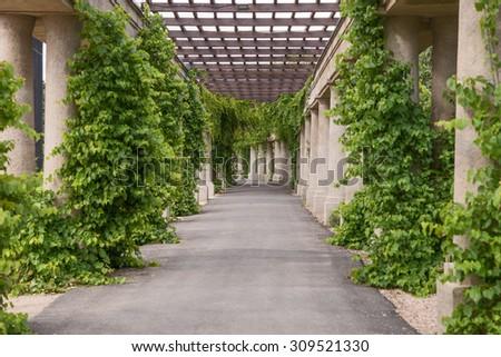 Garden archway, pergola, Wroclaw, Poland - stock photo