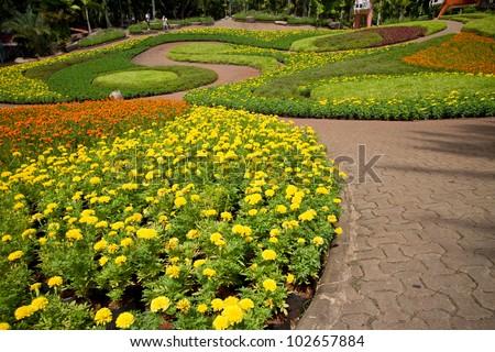 Garden arrangement - stock photo