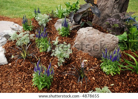 garden bed - stock photo
