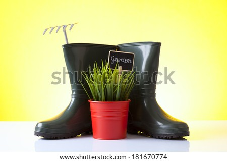 garden boots and house plant isolated on yellow - stock photo