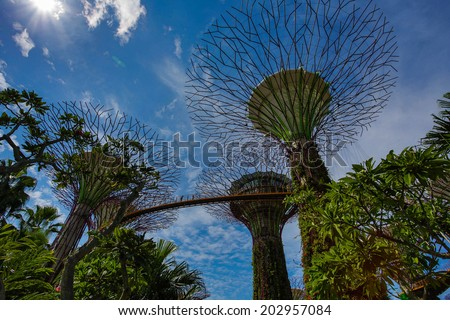 Garden By the Bay, Supertree, Singapore - stock photo