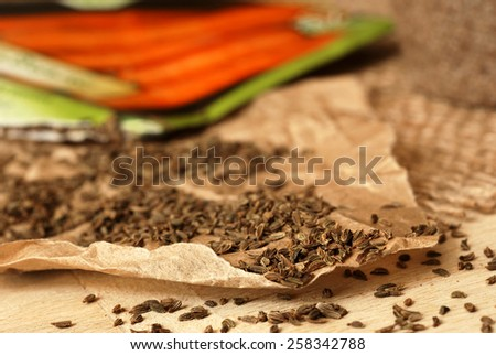 Garden carrot seeds spilling from packet onto parchment paper.  Macro with shallow dof.  Selective focus limited to seeds at front edge of paper. - stock photo