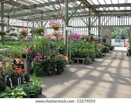 garden center with copy space - stock photo