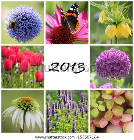 Garden collage 2013 - stock photo