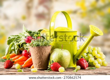 Garden concept, fresh fruits and vegetables on wooden table, watering can, seeds, plants - stock photo