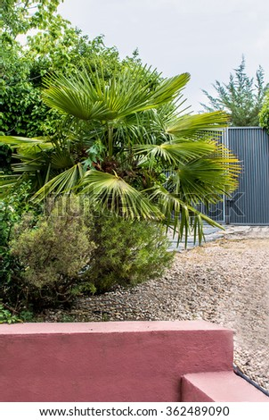 Garden corner whit metal doors palms and railing - stock photo