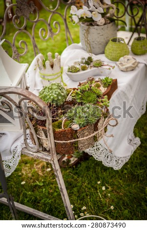 Garden decoration with wildflowers and succulents in shabby chic style - stock photo