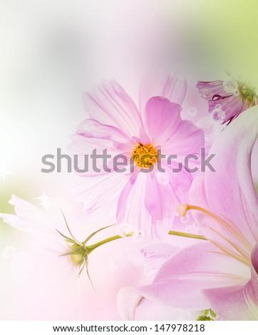 Garden flower card.Nature background - stock photo