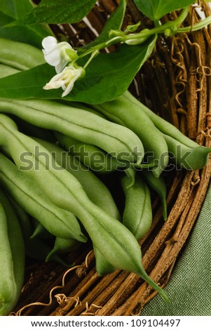Garden fresh green beans, also known as string beans or runner beans, are a healthy vegetable and part of a nutritious diet.