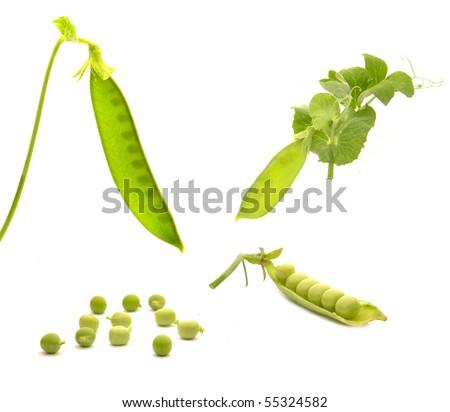 Garden fresh peas, on white - stock photo