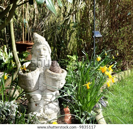 Garden Gnome Planter surrounded by Daffodils in an English Country Garden