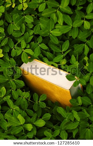 Garden Imagination. Book in dark green grass - stock photo