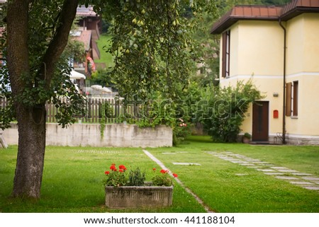 Garden in the alpine village. Pear tree with fruits. Mown grass in the garden. Red  geranium  (Pelargonium) flowers in flowerpot. Brown fence. Country houses in the background.  - stock photo