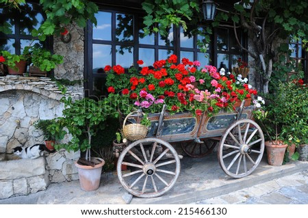 Garden in the cart in the city of Veliko Tarnovo in Bulgaria - stock photo