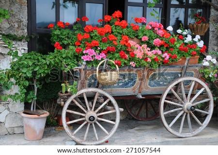 Garden in the cart in the city of Veliko Tarnovo in Bulgaria - stock photo