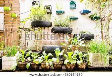 garden in urban at sukumwit 62 bangkok - stock photo