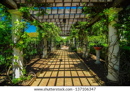Garden Lattice Stock Images Royalty Free Images Vectors