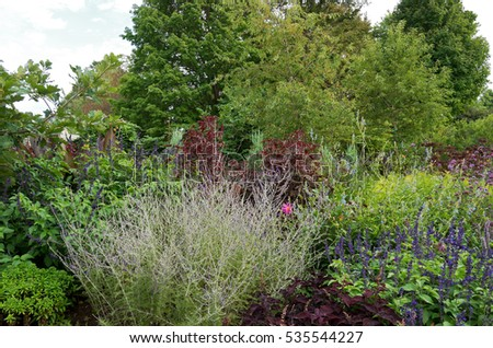 Picturesque Joe Ferrers Portfolio On Shutterstock With Remarkable Garden Of Ornamental Shrubs And Flowering Plants Bordered By Woodlands With Awesome Garden Blowers Petrol Also City Garden Design In Addition Garsons Garden Centre Fareham And Hackett Covent Garden As Well As Garden Pallet Furniture Additionally Garden Bird Identifier From Shutterstockcom With   Remarkable Joe Ferrers Portfolio On Shutterstock With Awesome Garden Of Ornamental Shrubs And Flowering Plants Bordered By Woodlands And Picturesque Garden Blowers Petrol Also City Garden Design In Addition Garsons Garden Centre Fareham From Shutterstockcom