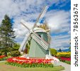 Garden of tulips with windmill at Skagit, Washington State, America. - stock photo