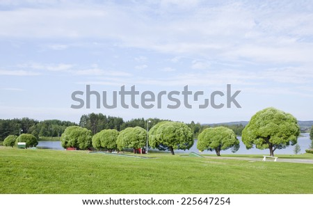 Garden, park by a river. Cultured trees, willow, lawn and a camping area. Gravel road through the park. - stock photo