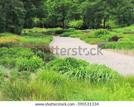 Garden path, focus on the foreground            - stock photo