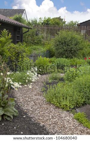garden path in a cottage garden. - stock photo