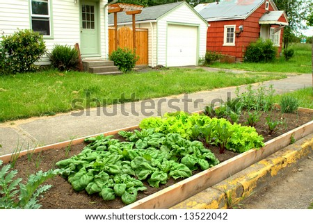 Garden portrait - stock photo