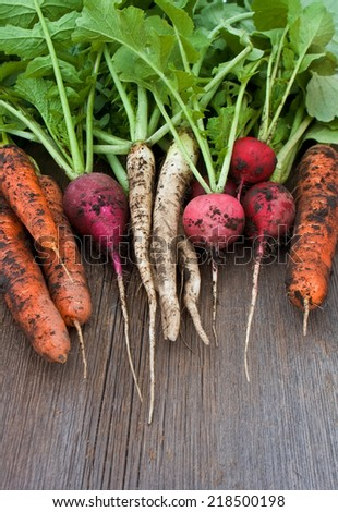Garden radish, carrots, daikon with soil on wooden background - stock photo
