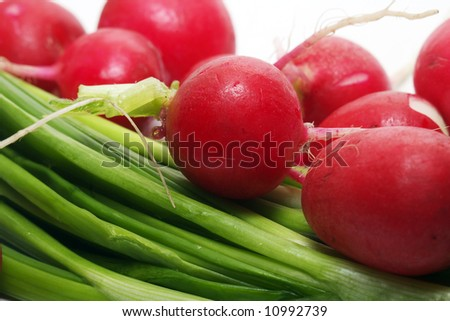 garden radishes and green spring onions