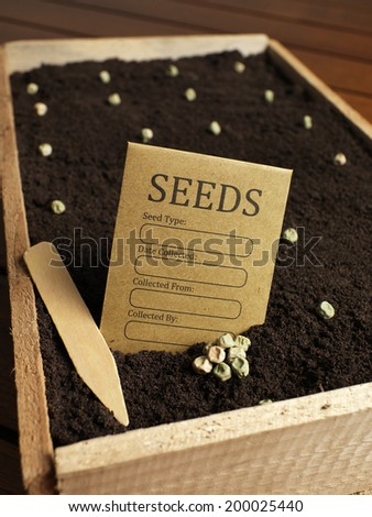 Garden seed packet with seeds - stock photo