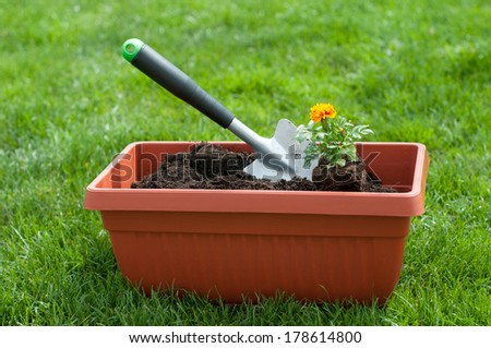Garden shovel and a flower in a pot with compost - stock photo