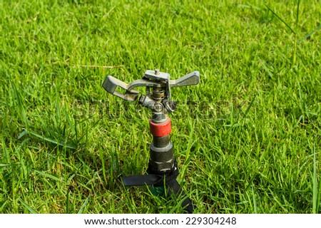 Garden sprinkler - stock photo