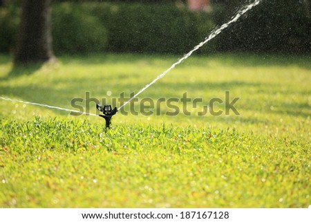 Garden sprinkler watering the green lawn