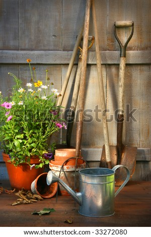 Garden tools and a pot of summer flowers in garden shed - stock photo