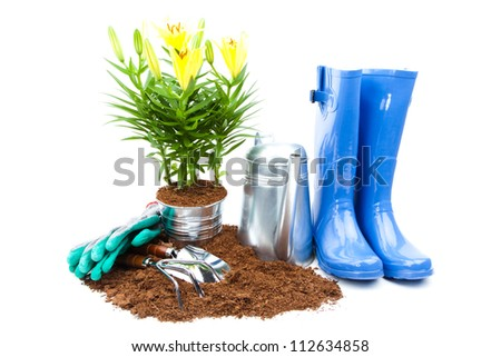 Garden tools and flowers - stock photo
