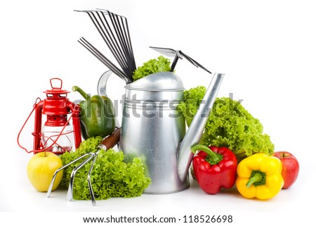 Garden tools and fresh vegetables isolated on white