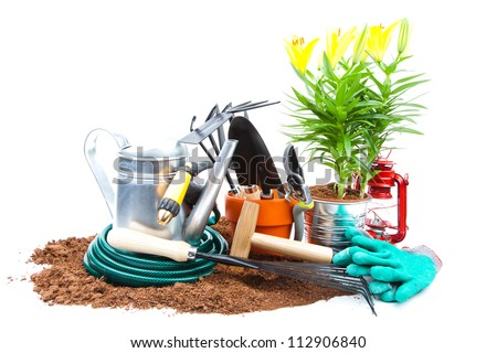 garden tools and plants - stock photo