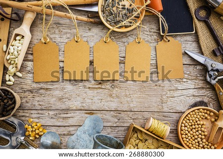 Garden tools and seeds on a wooden background, frame - stock photo