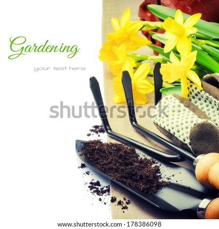 Garden tools and spring daffodils isolated over white - stock photo