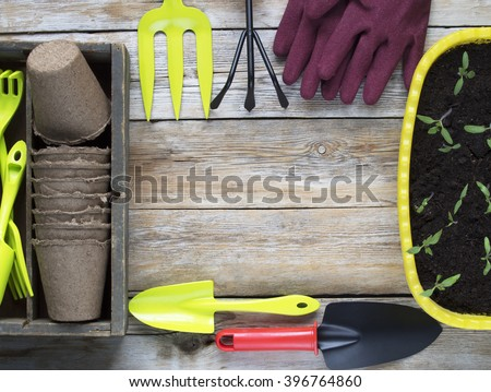 Garden tools, cardboard pots and seedling on wooden plank background - stock photo