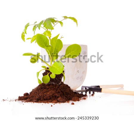Garden tools isolated on white  - stock photo