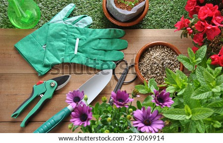 garden tools on grass and wood table with various types of plants - stock photo