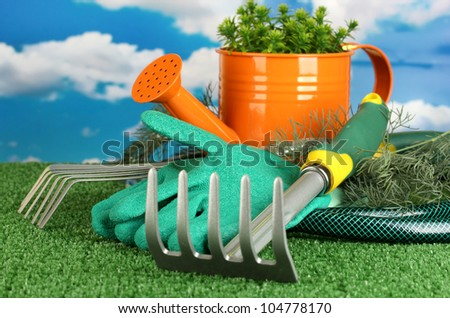 garden tools on lawn on sky background close-up - stock photo