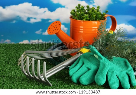 garden tools on lawn on sky background close-up
