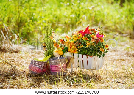 Garden utensils and wheelbarrow with flowers - stock photo
