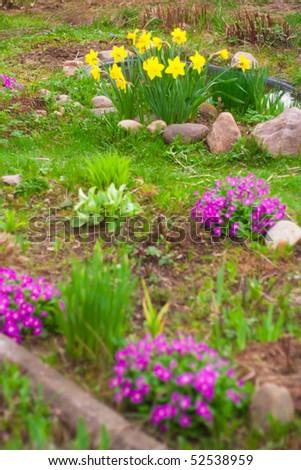 Garden view - stock photo