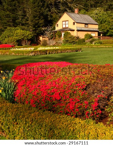Garden view with blooming flowers and lawn. - stock photo